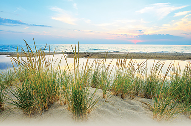 florida coastal landscape scene